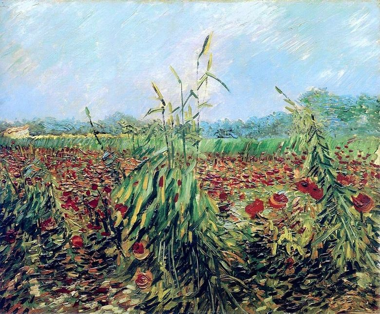 Green Wheat Ears   Vincent Van Gogh